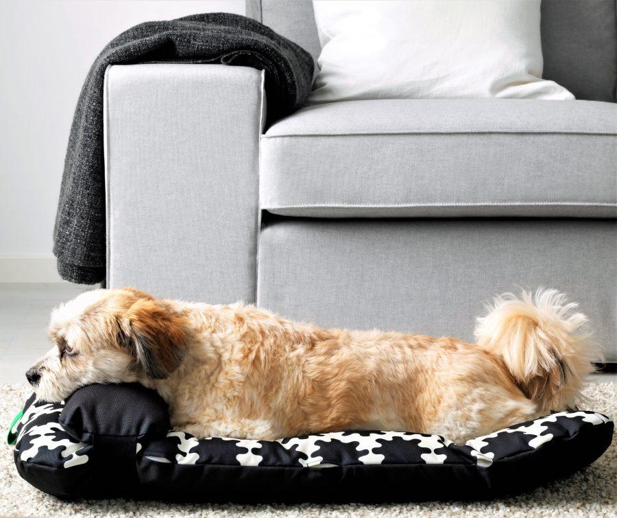 Haustiere wie Hund und Katze bekommen bei IKEA eigene Wohnmöbel und Accessoires