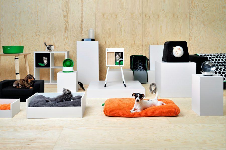 Haustiere und ihre Besitzer bekommen bei IKEA passende Möbel und Accessoires