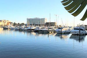 Staatssekretärin Ana Godinho sieht Portugal als sicheren Hafen für Investitionen
