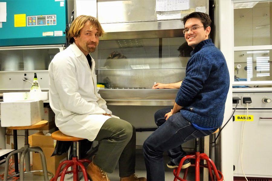 Stammzellen Forschung an der Universität der Algarve durch Bioinformatiker Matthias Futschik