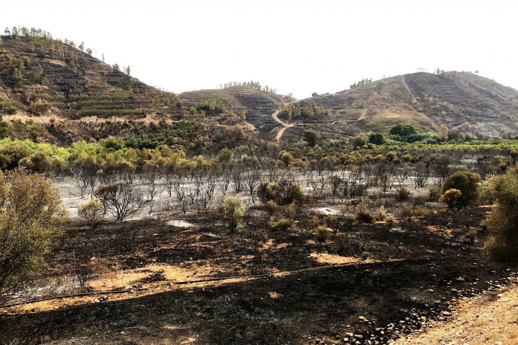 Algarve-Hotel bei Monchique von Waldbrand bedroht und Landschaft verbrannt