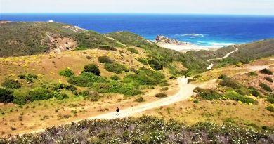 Algarve-Video wirbt für nachhaltigen Tourismus im Südwesten Portugals