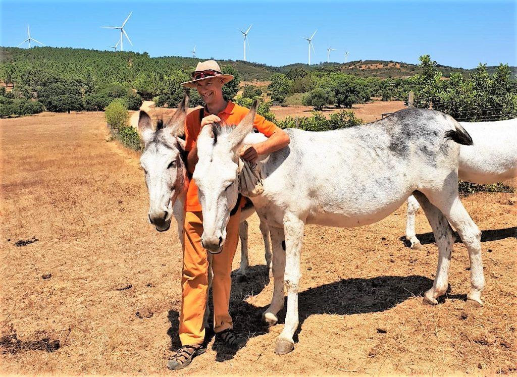 Robert Nestmann hat mit seinen Eseln nach dem Monchique-Waldbrand eine Übergangsbleibe nahe Lagos gefunden