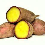 Süßkartoffel, Medronho und Kultur