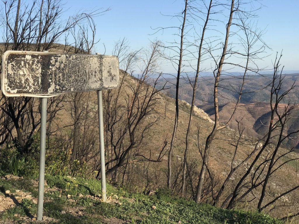 Waldbrand-Region Monchique braucht noch Monate für die Beseitigung der Waldbrand-Spuren
