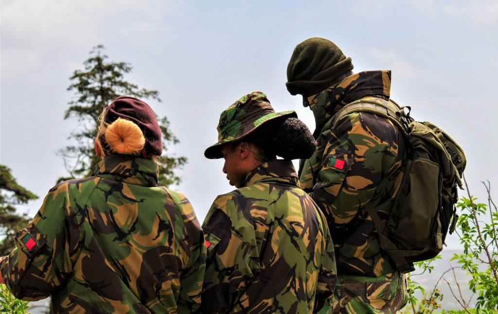 Algarve News über Soldaten-Unterstützung bei Waldbrand-Bekämpfung