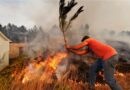 Portugal-Waldbrände: Wetterprognose beunruhigt am Montag