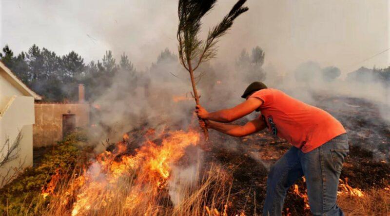 Portugal-Waldbrände wüten im Bezirk Castelo Branco nordöstlich von Lissabon