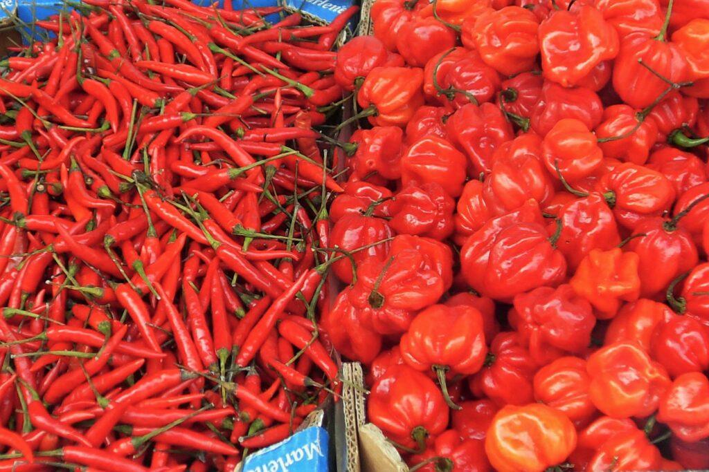 Algarve-Spezialitäten leben von frischen regionalen Zutaten gekauft auf Bauern-Märkten