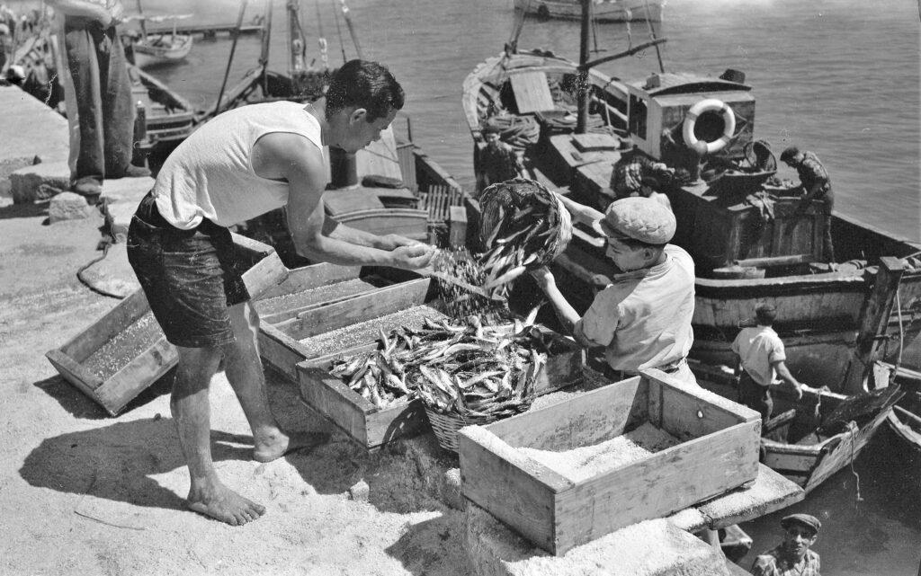 Anlieferung der Sardinen in Portimão geschah früher in Körben und Kisten